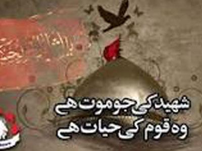 shiitenews - A Shia Pesh Imam martyred
