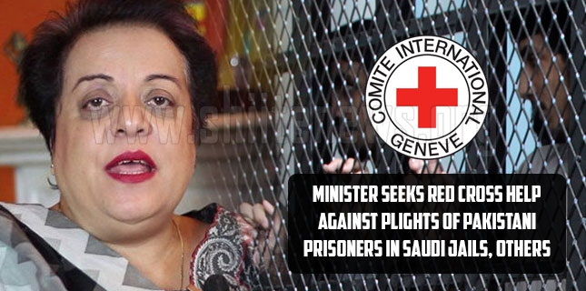 Minister seeks Red Cross help against plights of Pakistani prisoners in Saudi jails