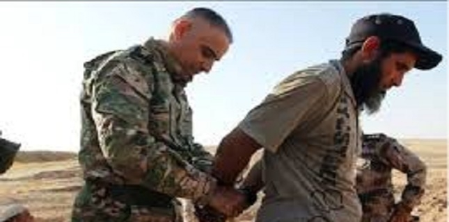 Syrian Democratic Forces captures 400 IS terrorists in Syria