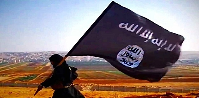 UAE is organizing ISIL in Southern Yemen: Report