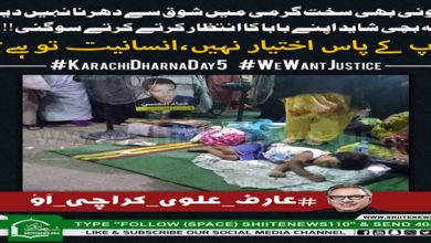 Shia community worldwide solidarity