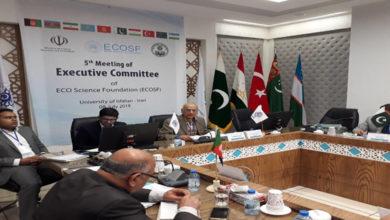 Pakistan ECO Meeting Iran