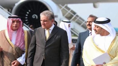 Pakistan Saudi UAE FMs