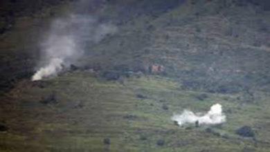 Indian troops kill 3
