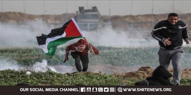 anti-occupation