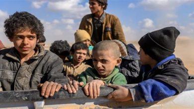 Daesh children