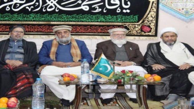 Pakistan Sunni Shia parties alliance
