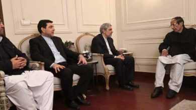Iran ambassador calls on
