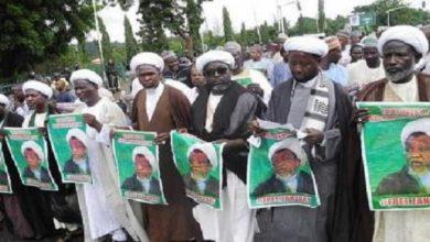 Members of IMN killed