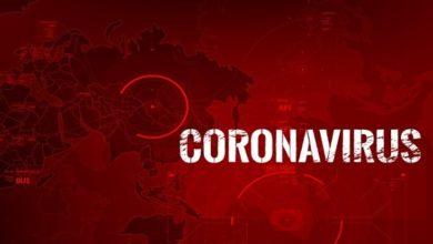 cases of coronavirus