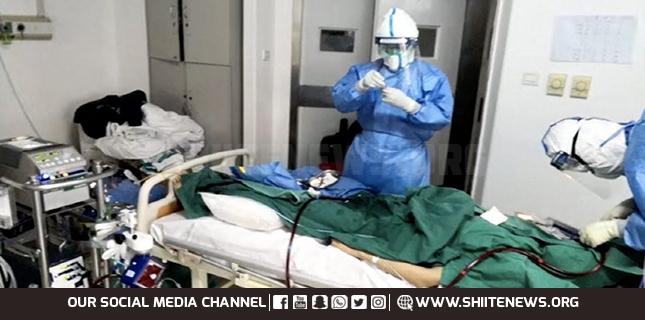 Shia youth donates plasma