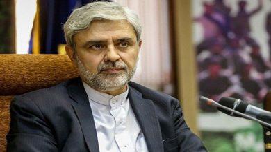 Ambassador Hosseini wants