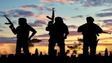 Daesh Insurgency
