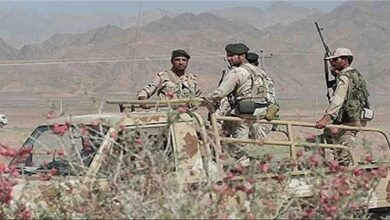 Iranian border guards killed