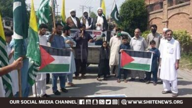 Pro Palestine demo held