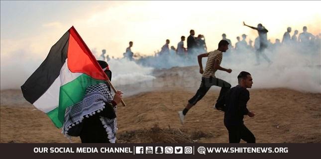 Gaza rallies