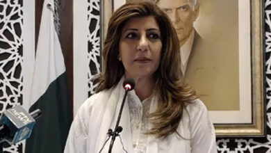 Pakistan condemns India and call for end to arms race