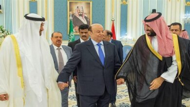 Hadi's Government