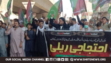 MWM supporters rally in Multan to condemn genocide