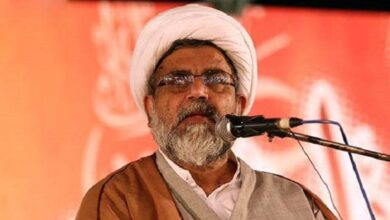 Allama Raja Nasir asks all Pakistanis to work for stability