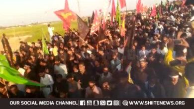 Shia Muslims 14km Arbaeen Walk