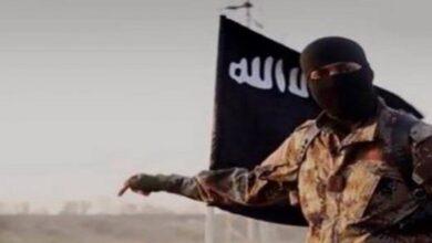 Daesh executes UN engineer in Iraq