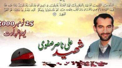 20th anniversary of martyrdom of Ali Nasir Safavi