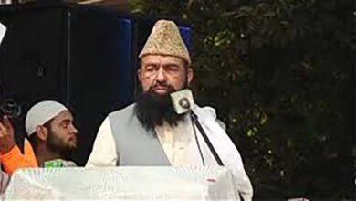 Sunni party leader urges Muslim regimes to unite
