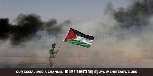 Palestinian case