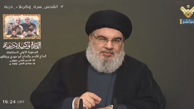 Hasan Nasrallah lauds Iran and Syria support against Israeli aggression