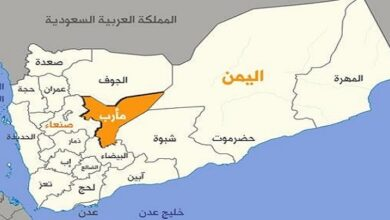 More tribes strike non-aggression agreements with advancing army, allies in Yemen's Ma'rib