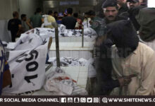 Terrorists involved in murder of Shia Muslims and Sunni driver