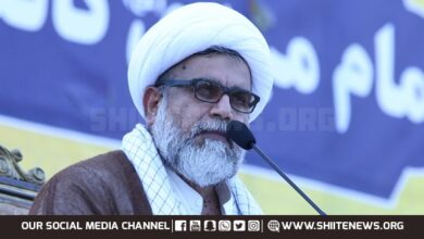 Allama Raja Nasir says Wilayah of Maula Ali guarantee welfare society