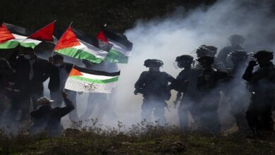 Israeli rights group says regime committing war crimes in Gaza