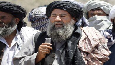 Taliban commander Mullah Manan Niazi killed in Herat