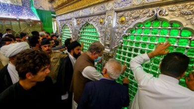 Shah Mehmood Qureshi in najaf