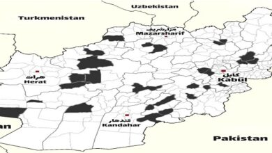 Taliban captured districts