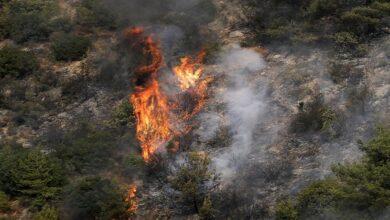 Hezbollah Battling Wildfire in North-Bekaa Barrens