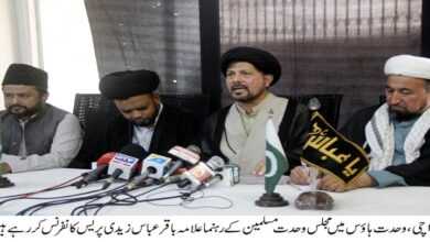 Arbaeen processions will be proved historical congregation this year, Allama Baqir Abbas Zaidi