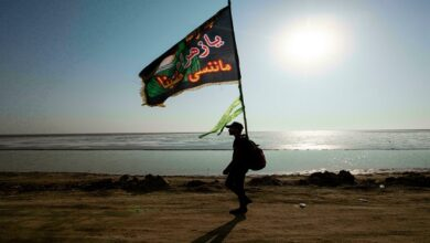 Iraq allows air travel for 30k Arbaeen pilgrims from Iran