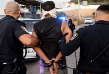 Palestinian Escapees