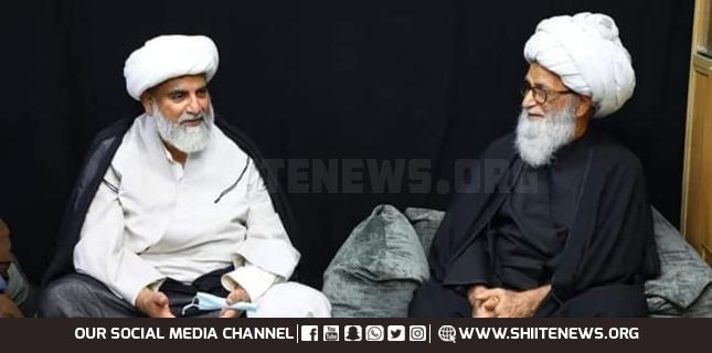 Allama Raja Nasir Abbas meets Ayatollah Hafiz Bashir Najafi in Iraq